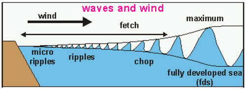 Effect of wind on waves over distance (fetch) Image from http://homepages.cae.wisc.edu/~chinwu/